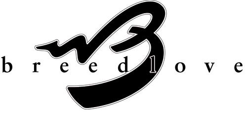 Breedlove_Logo_Color_1_